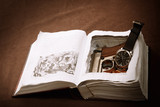 Wristwatch and gun in book safe
