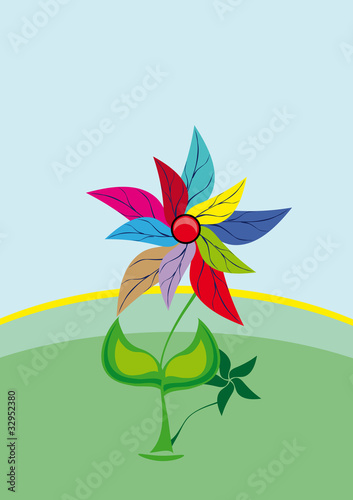flower on isolated background