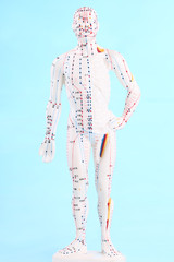 Asian acupuncture figure over blue