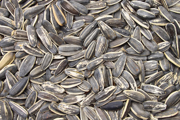 A bulk of sunflower grains