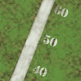 high res grass texture