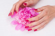 Woman hands with manicure touching pink flower