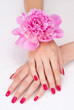 Top view of woman hands with pink manicure and flower