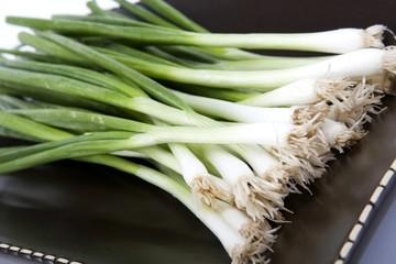 Green onions scallions fresh bunch