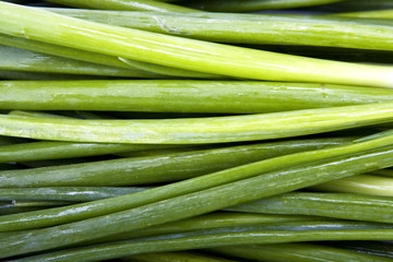 Green onions scallions fresh bunch closeup macro