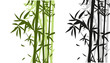 Fototapeten,asien,bambus,weiß,botanisch