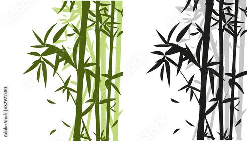 Fototapeten,asien,bambu,weiß,botanical