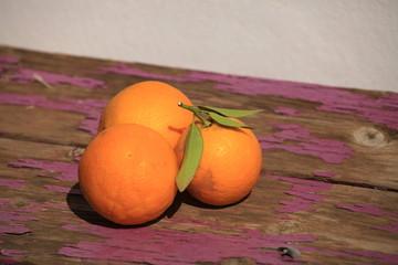 Früchte 24
