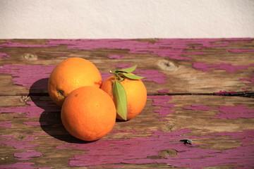 Früchte 25
