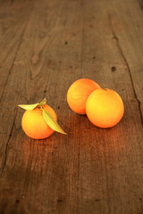 Früchte 36