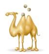 salvadanaio cammello