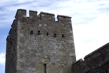 Fort, Cahir, Ireland