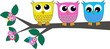 obraz - three cute owls
