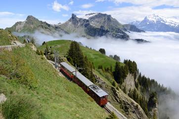 Schynige-Platte-Bahn, Berner Oberland