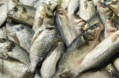 Fresh fishes on a market stall