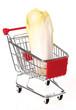 Chicoree einkaufen