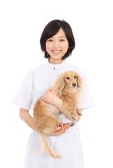 犬と白衣を着た女性