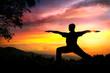 Yoga silhouette virabhadrasana II warrior pose