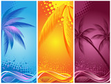 Fototapety tropical palm, background summer