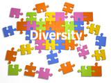 3d A diversity puzzle