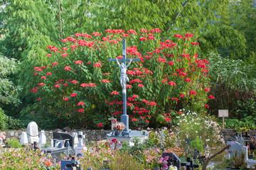 cimetière paysager, Hell-Bourg, Salazie, île de la Réunion