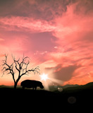 Fototapete Nildelta - Abenddämmerung - Säugetiere