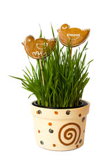 Gingerbread birds on the flowerpot with corn isolated