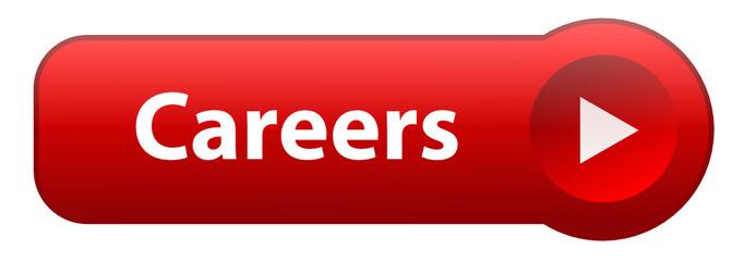 """CAREERS"" Web Button (search job offers vacancies seeking jobs)"