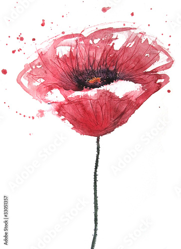 kwiat-maku-akwarela