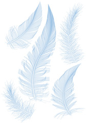 set of blue vector feathers