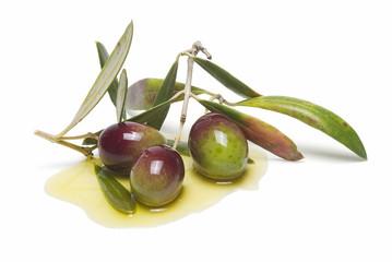 Aceitunas para elaborar aceite de oliva.