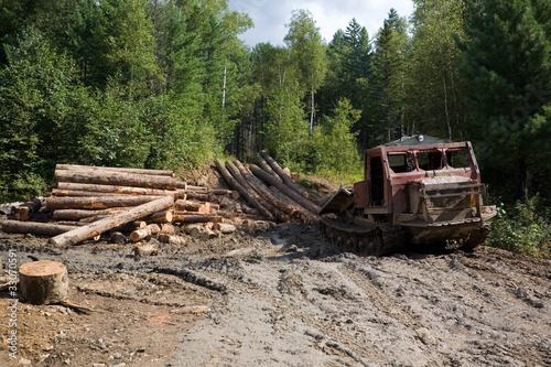 Deforestation. Forestry. Old skidder.