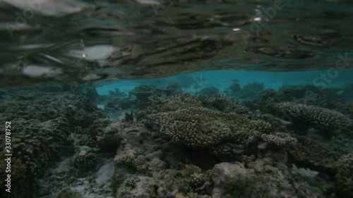 Semi-underwater video of tropical island, Maldive