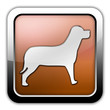"""Bronze Glossy Square Icon """"Dog / K9 / Canine"""""""