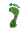 Ecological footprint concept - grass patch footrpint