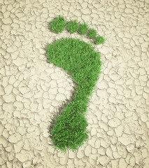 Ecological footprint - grass patch footrpint