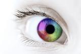 Rainbow eye closeup
