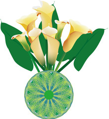 A bottle of yellow calla lily on white background