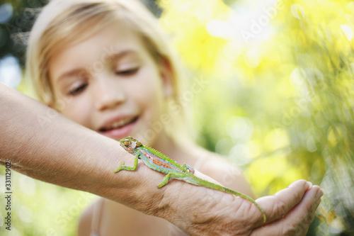 Girl watching lizard on grandmother?s arm