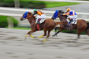 HORSE RACE passing