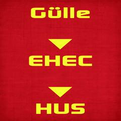 gülle-EHEC-HUS = ursprung und folgen