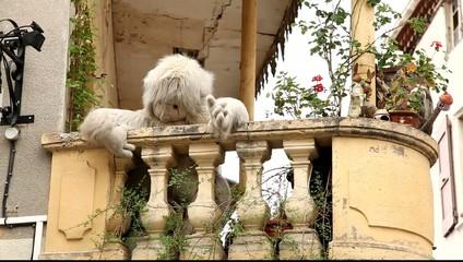 Женщина на балконе чистит большую мягкую игрушку.