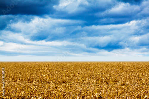 American Land with cloudy sky and fog in background