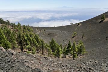 La Palma Höhenweg