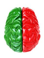 brain - 3d