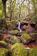 Small natural waterfall.