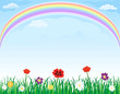 Rainbow over meadow with grass and flowers - vector