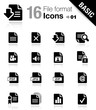 Basic -  File format icons