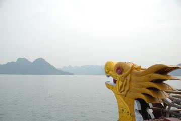 Kalkfelsen der Halong-Bucht 8
