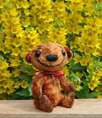 Teddy-bear Niusia